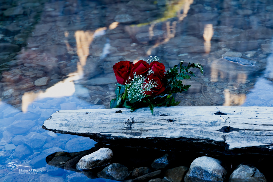 Banff IMG_9839-Edit