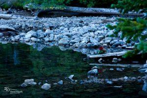 Banff IMG_9849-Edit