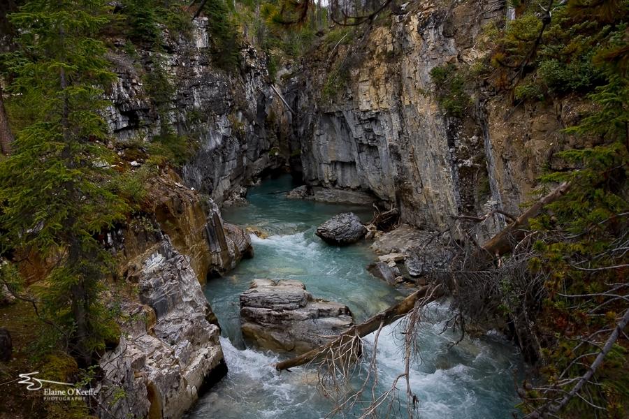 Banff IMG_9868-Edit